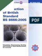 Britse-Standaard-BS-86662005.pdf