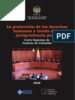 LA PROTECCION DE LOS DERECHOS HUMANOS A TRAVES DE LA JURISPRUDENCIA PENAL - CSJ 2008.pdf