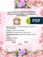 317530679-INFORME-HORTALIZAS