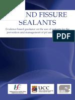 fs_guideline_online_final_v_2.pdf