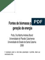 Fontes de Biomassa para Geração de Energia