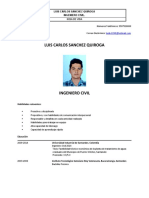 01 CV LUIS SANCHEZ.pdf