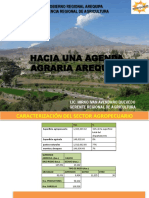 presentacion-arequipa.pdf