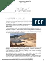 CONCENTRACIÓN DE MINERALES_ _ luis.pdf
