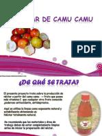 Proyecto (Néctar de Camu Camu)