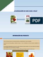 Exportación de Liofilización de Camu Camu a Italia