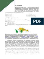 Reproduksi Pada Tumbuhan Angiospermae