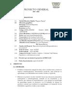 GRAN PROYECTO ESCOLAR2017.docx