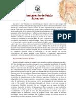 4. EL TESTAMENTO DE PABLO _ROMANOS_