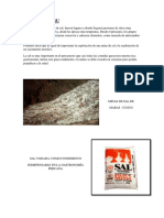 375497205-SAL-EN-EL-PERU.pdf
