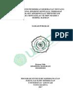 Naskah Publikasi 201310201033