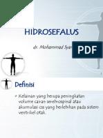 Hidrosefalus NEW