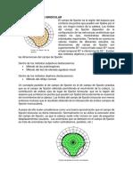 821-Texto del artículo-1534-1-10-20121013