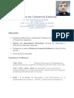 Curriculum Mario Ramirez