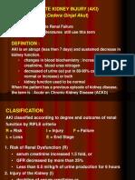 Acute Kidney Injury (Mhs Smt IV FK Unud).ppt