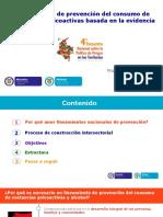 Lineamiento Prevencion Consumo SPA MinSalud