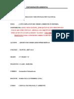 IMPACTO AMBIENTAL MINERA