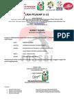 Surat Tugas Sulawesi Tengah
