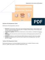 Integumentary System Anatomy and Physiology