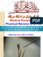 practicalrevisionpart3-160623181417