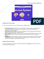 NERVOUS SYSTEM ANATOMY AND PHYSIOLOGY.docx