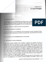 Di Tullio Morfologia