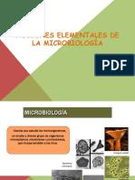 microbiologia exposicion