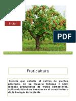 Presentación Fruti Clase 2017 Estructura Del Arol Frutal