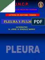1.-PLEURA Y PULMONES.ppt