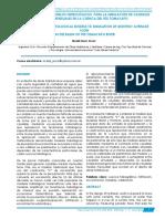 PAPER_ MODELOS COMPRCIO.pdf