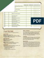 Shaman v1.pdf