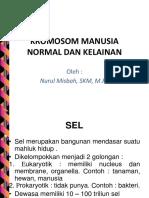Kromosom Manusia Normal Dan Kelainan