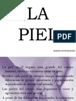 LA PIEL (2)