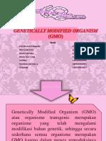 Genetically Modified Organism (GMO) KELOMPOK