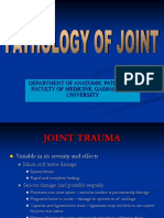 Pathology of the Joint