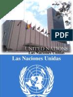 Organización Internacional..pps