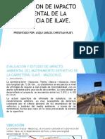 EVALUACION DE IMPACTO AMBIENTAL DE LA PROVINCIA DE ILAVE.pptx