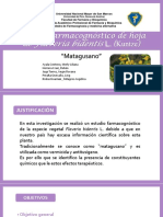 matagusano -farmacognosia