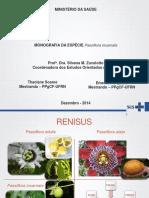 Monografia Passiflora e suas espécies - Difference between Passiflora species