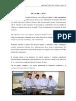 261607395-Calor-Especifico-de-Solidos.docx