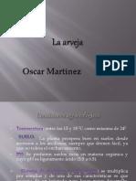 Datos de La Arveja