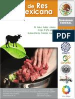 05-manual-carne-de-res-mexicana (1).pdf