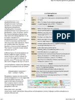 Acid Phosphatase - Wikipedia, The Free Encyclopedia