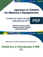 apresentacao-nr12.pdf