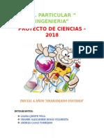 Informe Proyecto de Feria