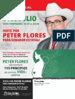 Principios PAC mailer for Pete Flores in SD-19 special election