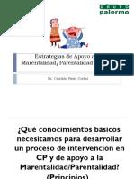 Competencias_Parentales_Grupo_Palermo_Noviembre2015.pdf