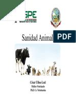1.1_Sanidad_Animal_ESPE_introduccion-min.pdf
