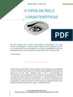 04 Tipos de Iris CORRIGIDA.pdf