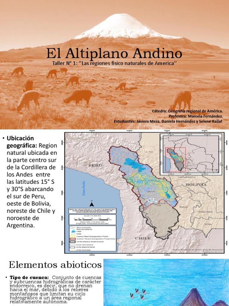 El Altiplano Andino